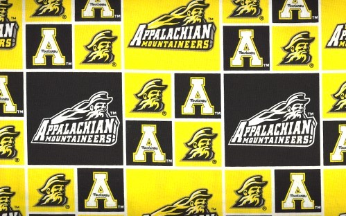 Appalachian State Moutaineers